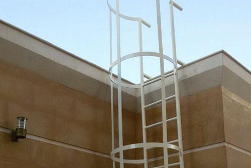 punjam-metals_0016_Cat-Ladder