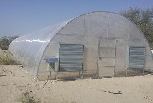 punjam-metals_0020_greenhouse